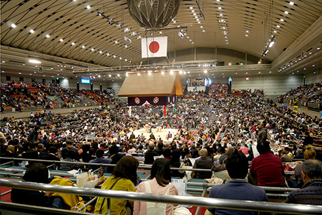 2017_03_Sumo02