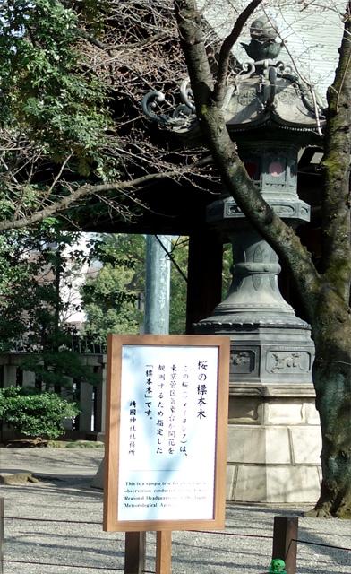 20180314_Yasukuni_02