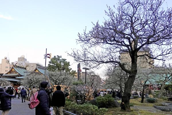 Yushima06